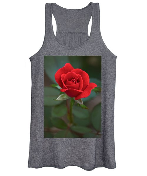 The Perfect Rose Women's Tank Top
