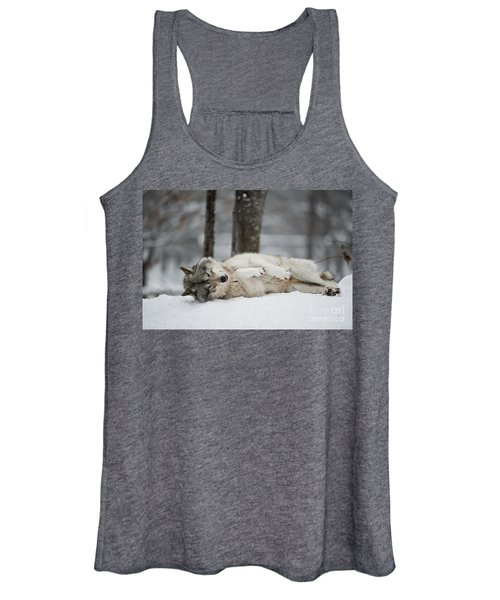 Timber Wolf In Winter Women's Tank Top