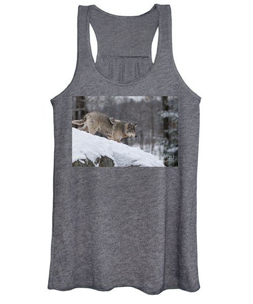 Timber Wolf On Hill Women's Tank Top