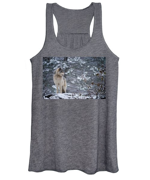 Timber Wolf Pictures 189 Women's Tank Top