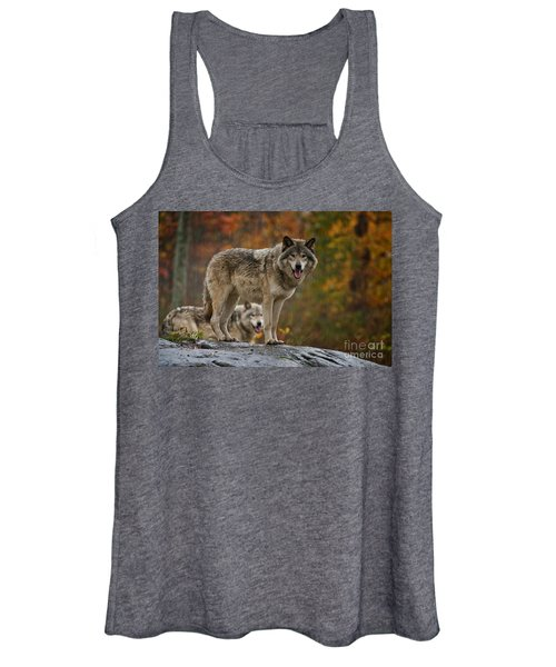 Timber Wolf Pictures 410 Women's Tank Top
