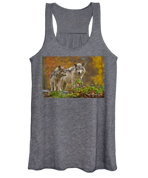 Timber Wolf Pictures 411 Women's Tank Top