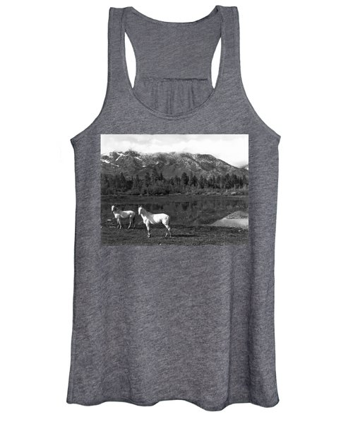Two White Horses By A Pond Women's Tank Top