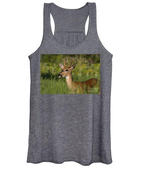 White-tailed Buck In Velvet Women's Tank Top