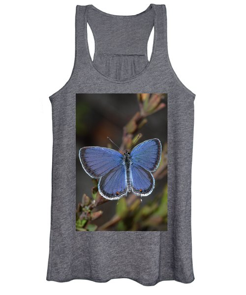 Eastern Tailed Blue Butterfly Women's Tank Top