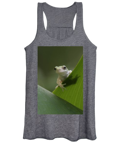 Juvenile Grey Treefrog Women's Tank Top