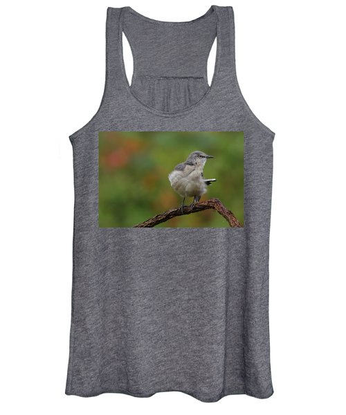Mocking Bird Perched In The Wind Women's Tank Top