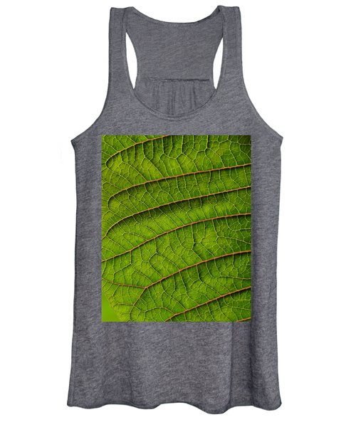 Poinsettia Leaf II Women's Tank Top