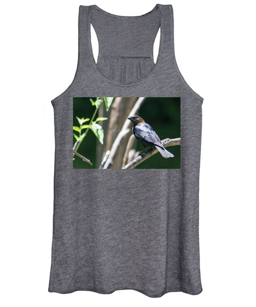 Brown-headed Cowbird Women's Tank Top