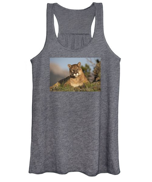 Mountain Lion Portrait North America Women's Tank Top