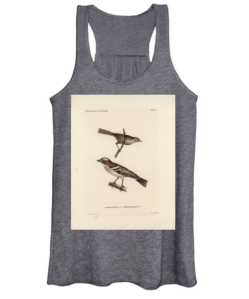 White-browed Sparrow-weaver And Grass Or Bush Warbler Women's Tank Top
