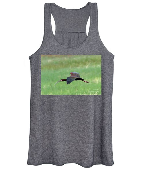 White-faced Ibis Women's Tank Top
