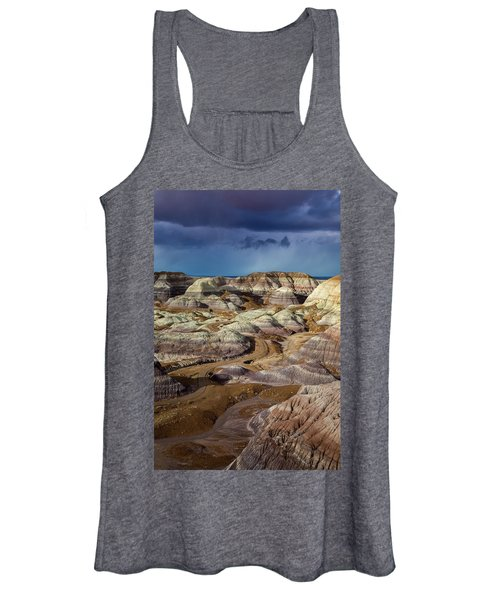 The Petrified Forest National Park Women's Tank Top