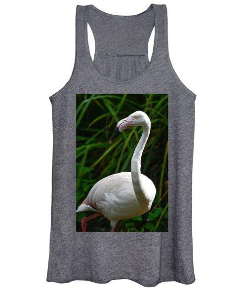 Beautiful Portrait Of Greater Flamingo Phoenicopterus Roseus Bir Women's Tank Top