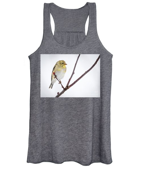 A Sign Of Spring Women's Tank Top