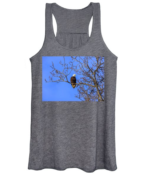 Alaskan Bald Eagle In Tree At Sunset Women's Tank Top