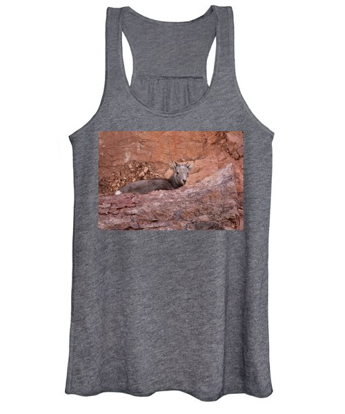 Bighorn Lamb1 Women's Tank Top