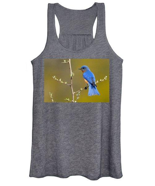 Bluebird Bliss Women's Tank Top
