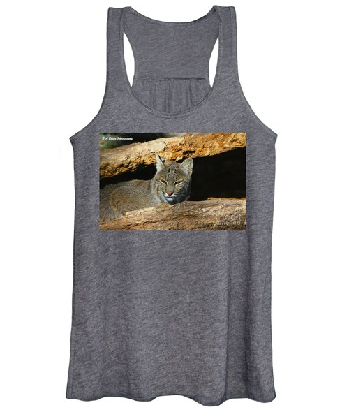 Bobcat Hiding In A Log Women's Tank Top