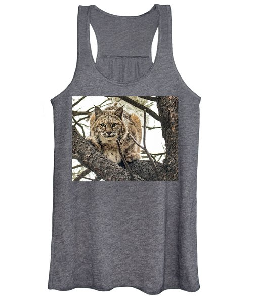 Bobcat In Winter Women's Tank Top