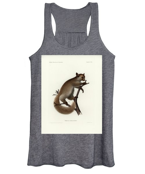 Brown Greater Galago Or Thick-tailed Bushbaby Women's Tank Top