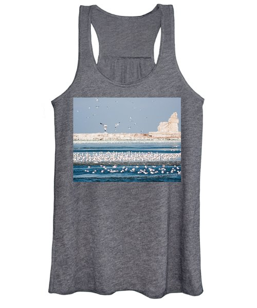 Cleveland Lighthouse In Ice  Women's Tank Top