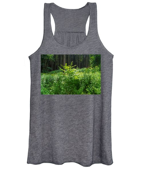Colors Of A Forest In Vogelsberg Women's Tank Top