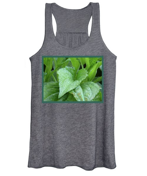 Echinacea After The Rain I Women's Tank Top