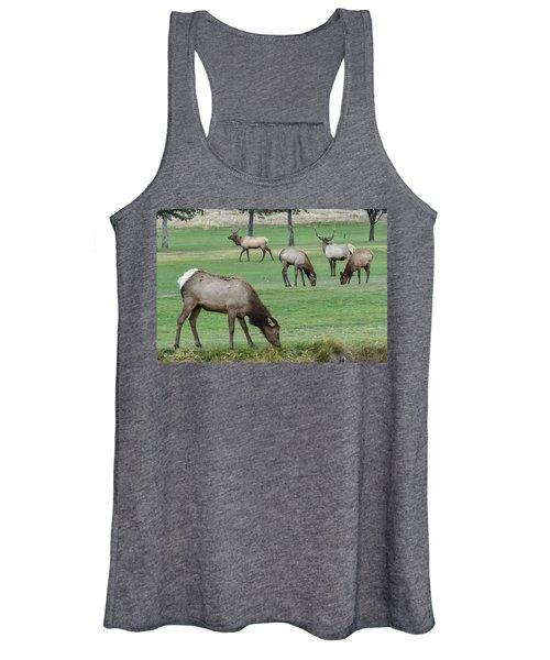 Elk On Golf Course Estes Park Colorado Women's Tank Top