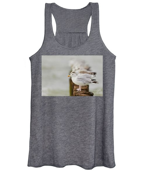 European Herring Gulls In A Row Fading In The Background Women's Tank Top