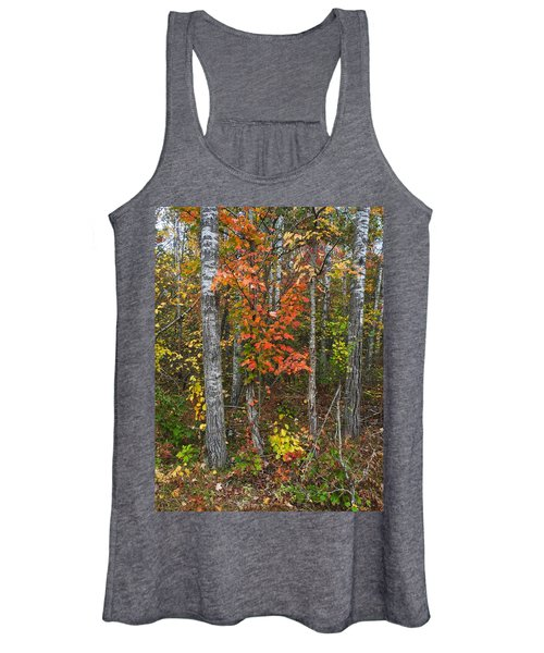 Fall Color At Gladwin 4543 Women's Tank Top
