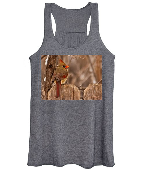 Female Cardinal On The Fence Women's Tank Top