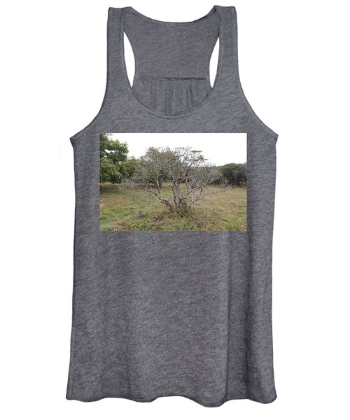 Forest Character Tree Women's Tank Top