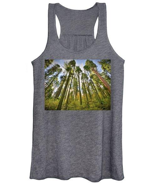 Forest Of Light Women's Tank Top
