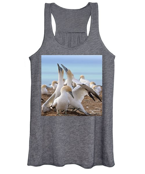 Gannets Women's Tank Top