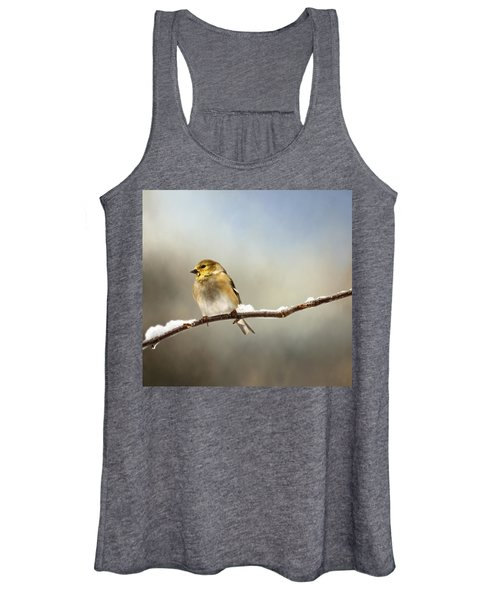 Goldfinch After A Spring Snow Storm Women's Tank Top