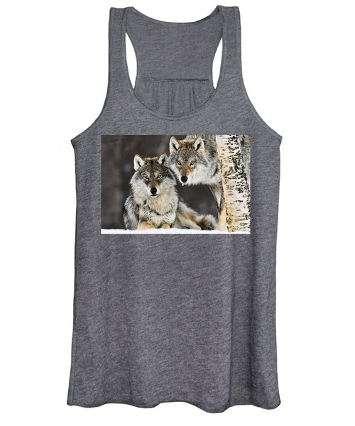 Gray Wolf Canis Lupus Pair In The Snow Women's Tank Top