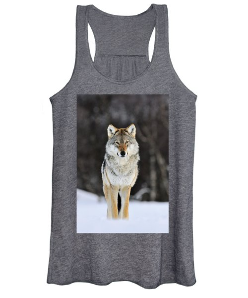 Gray Wolf In The Snow Women's Tank Top