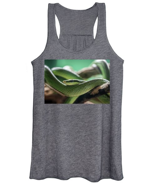 Green Snake On The Branch Women's Tank Top