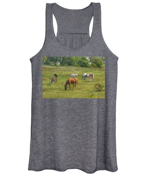 1003 - Horses In A Pasture I Women's Tank Top