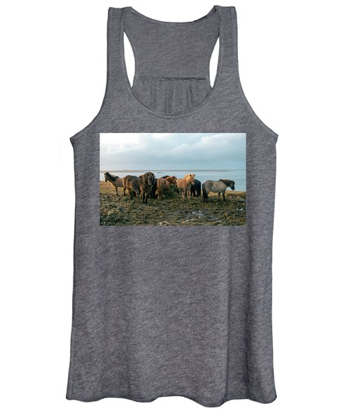Horses In Iceland Women's Tank Top