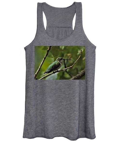Hummingbird On Branch Women's Tank Top