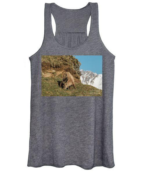 Ibex On The Mountains Women's Tank Top