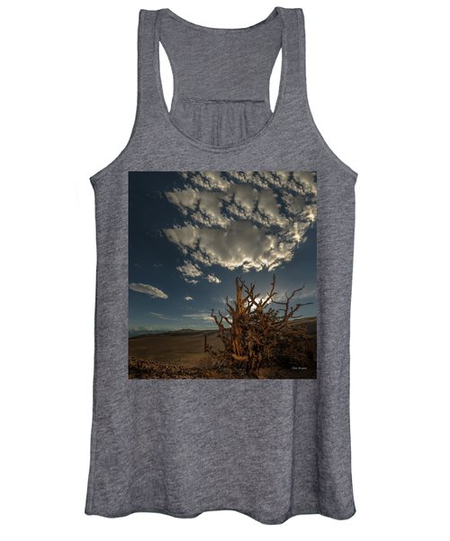 Late Afternoon In The Bristlecone Forest Women's Tank Top