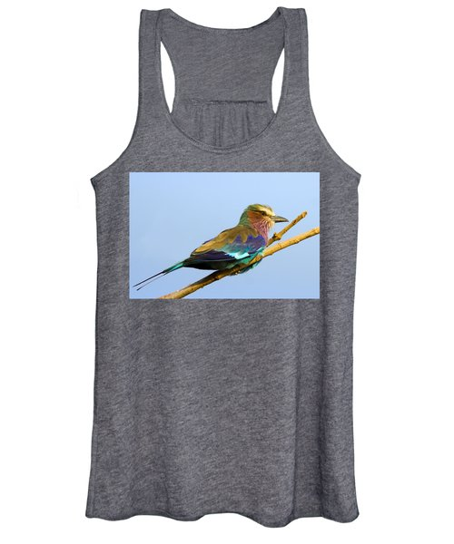 Lilac-breasted Roller Women's Tank Top