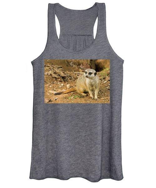 Meerkat Women's Tank Top
