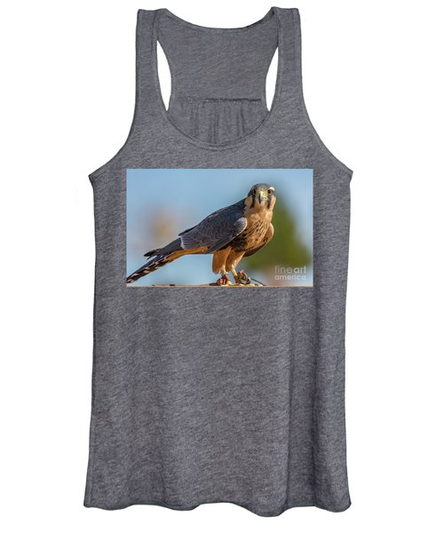 Peregrine Falcon Wildlife Art By Kaylyn Franks Women's Tank Top