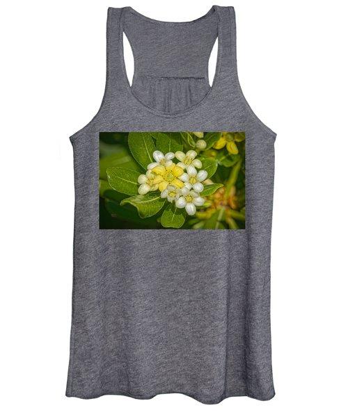 Pittosporum Flowers Women's Tank Top