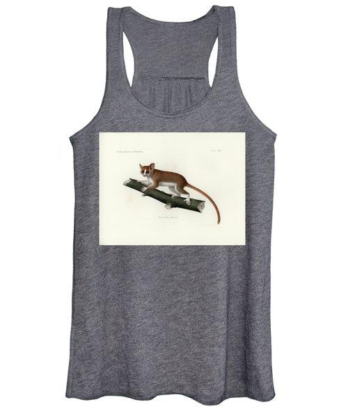 Pygmy Mouse Lemur Women's Tank Top