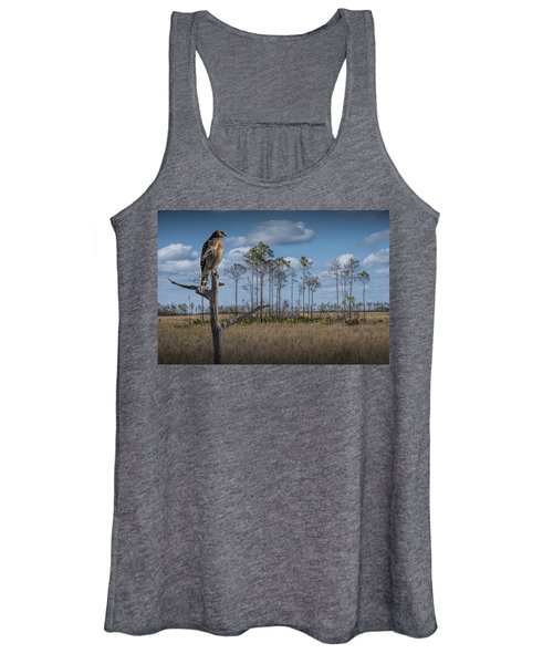Red Shouldered Hawk In The Florida Everglades Women's Tank Top